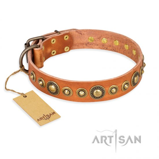 """Feast of Luxury"" FDT Artisan Tan Leather Boxer Collar with Old Bronze Look Circles"