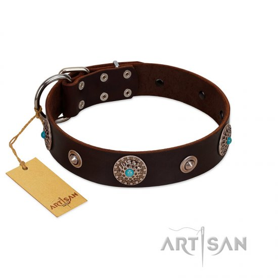 """Magic Stones"" FDT Artisan Brown Leather Boxer Collar with Chrome Plated Brooches and Studs"