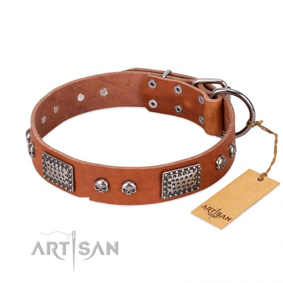 """Sparkling Skull"" FDT Artisan Tan Leather Boxer Collar with Old Silver Look Plates and Skulls"