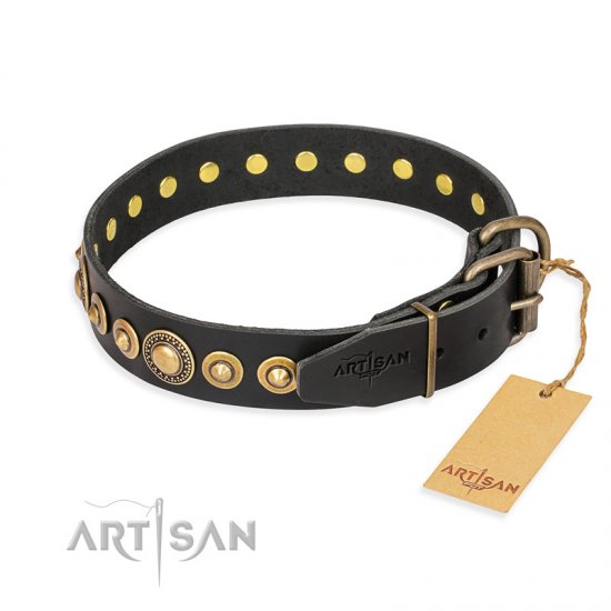 """Gold Mine"" FDT Artisan Black Leather Boxer Collar with Amazing Bronze-Plated Round Studs"