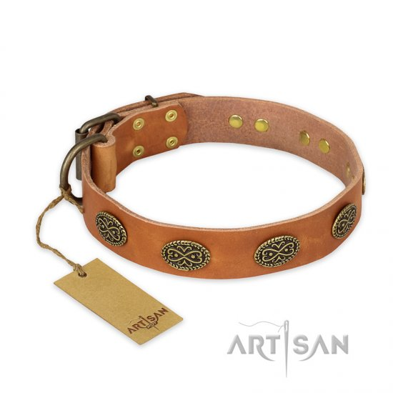 """Magic Amulet"" FDT Artisan Tan Leather Boxer Collar with Oval Studs"