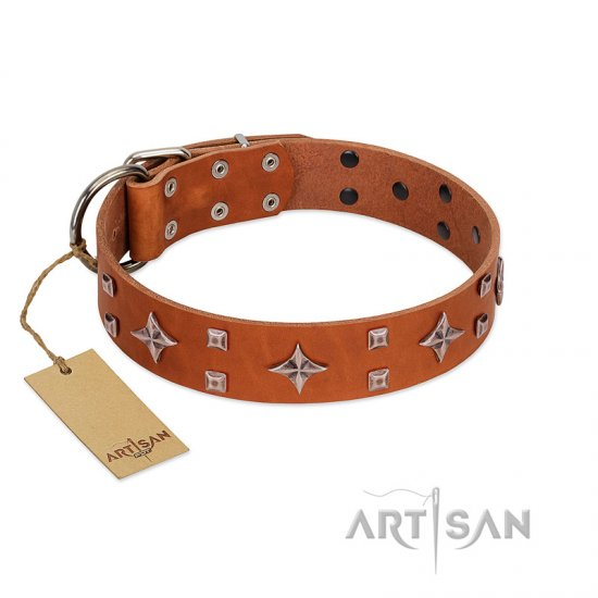 """Tawny Beauty"" FDT Artisan Tan Leather Boxer Collar Adorned with Stars and Tiny Squares"