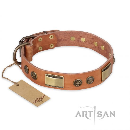 """Lost Desert"" FDT Artisan Leather Boxer Collar with Brass Decorations"