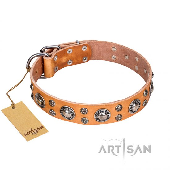 'Extra Sparkle' FDT Artisan Handcrafted BoxerTan Leather Dog Collar