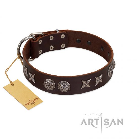"""Silver Sunset"" Designer Handmade FDT Artisan Brown Leather Boxer Collar"