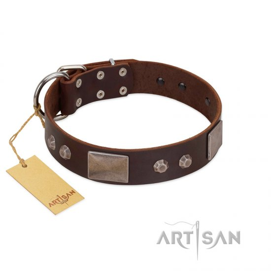 """Stone Stars"" Stylish Handmade FDT Artisan Brown Leather Boxer Collar"