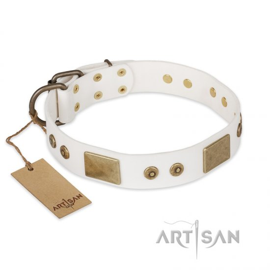 """Unforgettable Impress"" FDT Artisan Decorated Leather Boxer Collar with Decorations"