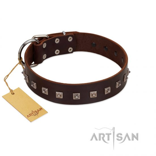 """Kingly Grace"" FDT Artisan Brown Leather Boxer Collar with Silver-like Dotted Studs"