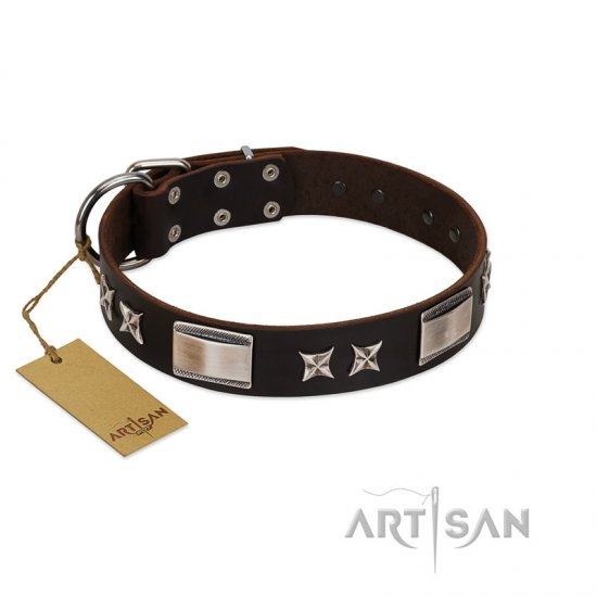 """Satin Beauts"" FDT Artisan Brown Leather Boxer Collar with Stars and Plates"