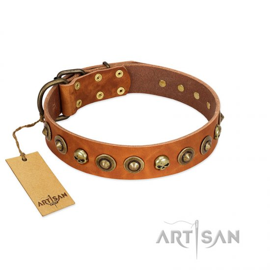 """Prez of the Pack"" FDT Artisan Tan Leather Boxer Collar with Skulls and Brooches"