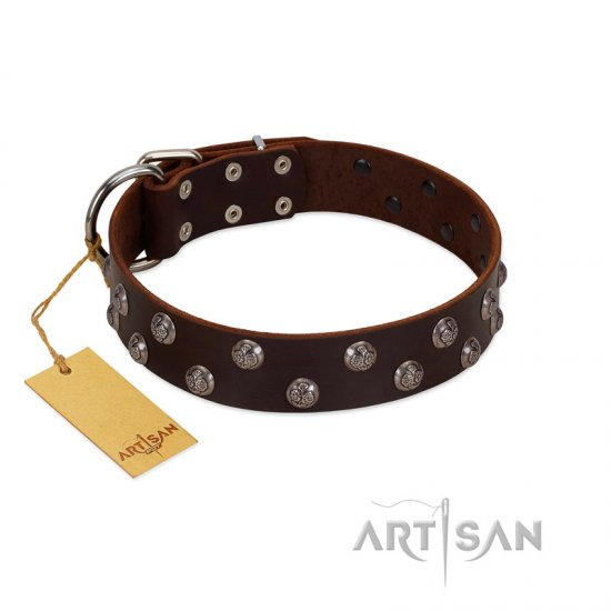 """Blossom Jewel"" FDT Artisan Brown Leather Boxer Collar with Two Rows of Silver-like Studs with Engraved Flowers"