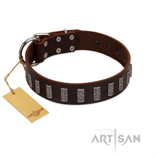 """Brown Lace"" Handmade FDT Artisan Brown Leather Boxer Collar for Everyday Walks"