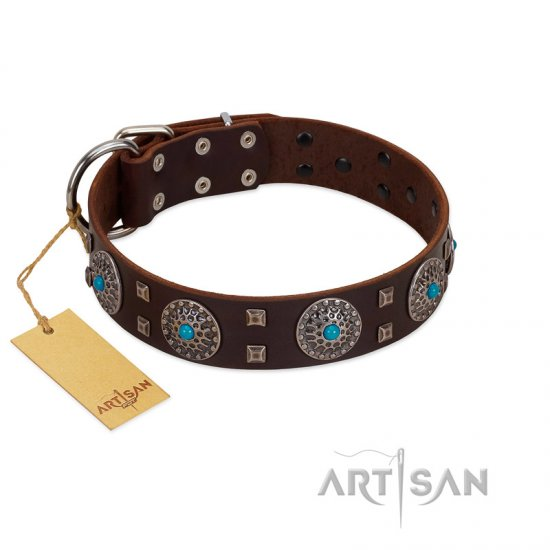 """Hypnotic Stones"" FDT Artisan Brown Leather Boxer Collar with Chrome Plated Brooches and Square Studs"