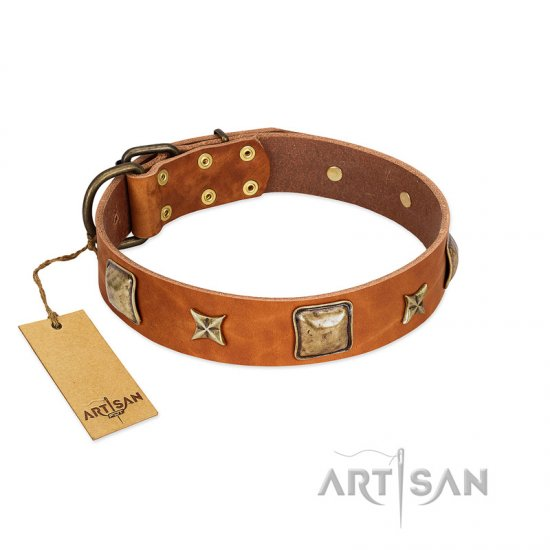 """Celtic Tunes"" FDT Artisan Tan Leather Boxer Collar Adorned with Stars and Squares"