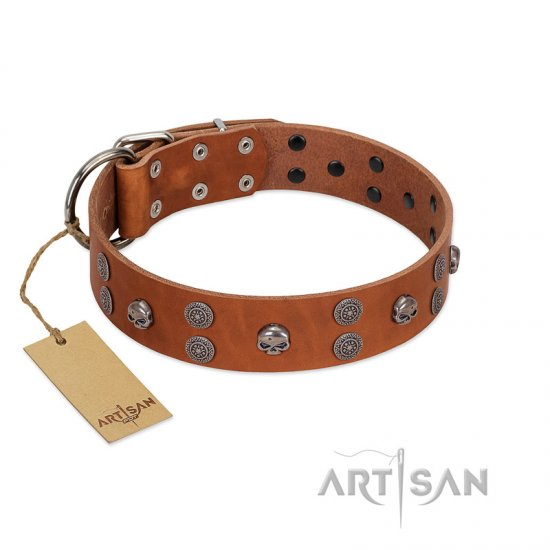 """Road Rider"" FDT Artisan Tan Leather Boxer Collar with Old Silver-like Skulls and Medallions"