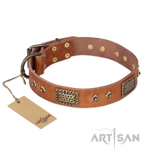 """Catchy Look"" FDT Artisan Decorated Tan Leather Boxer Collar"