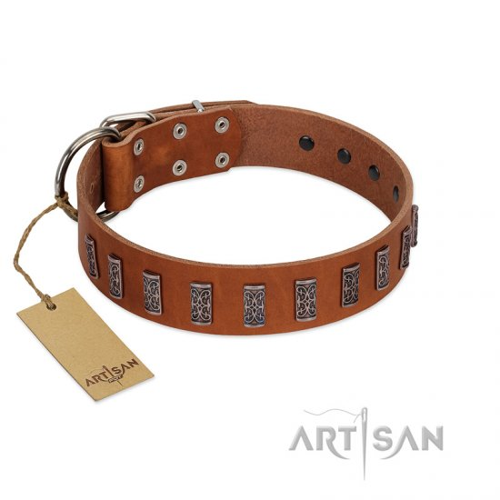 """Silver Century"" Fashionable FDT Artisan Tan Leather Boxer Collar with Silver-Like Plates"