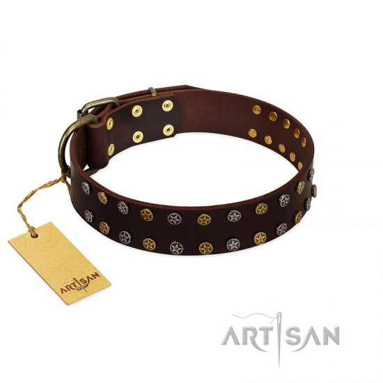 """To the Moon and Back"" FDT Artisan Brown Leather Boxer Collar with Bronze-like Star Studs"