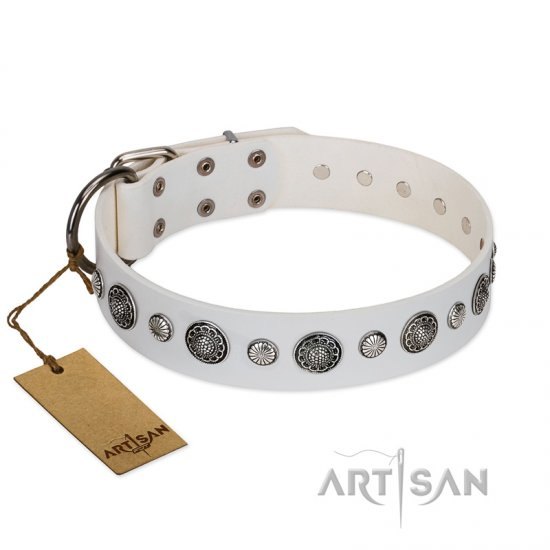 """Fluff-Stuff Beauty"" FDT Artisan White Leather Boxer Collar with Silver-like Studs and Conchos"