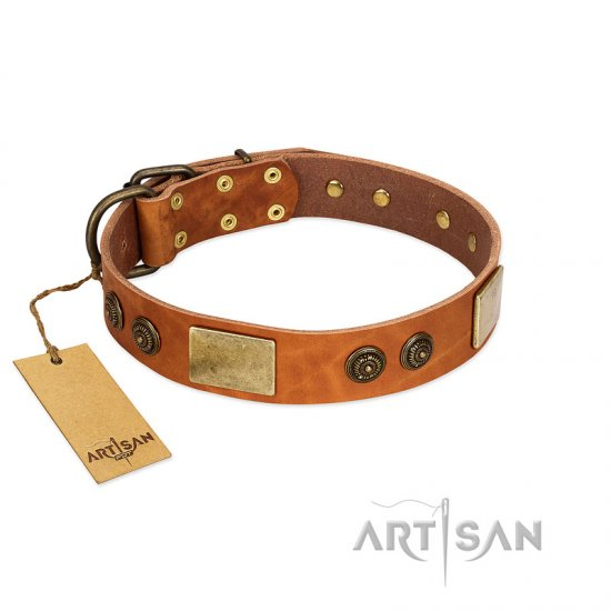 """Bronze Century"" FDT Artisan Tan Leather Boxer Collar with Plates and Brooches with Cool Ornament"