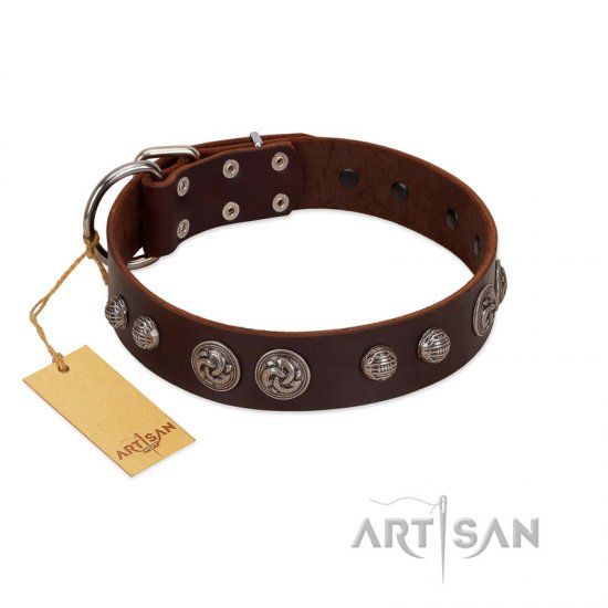 """Choco Brownie"" FDT Artisan Brown Leather Boxer Collar Adorned with Silver-Like Conchos"
