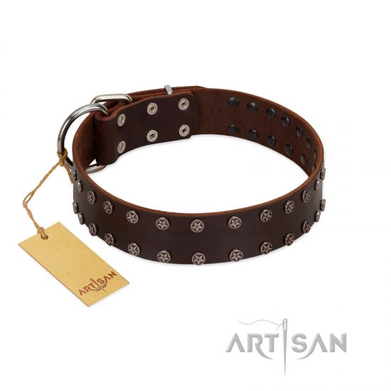 """Star Party"" Handmade FDT Artisan Brown Leather Boxer Collar with Silver-Like Studs"