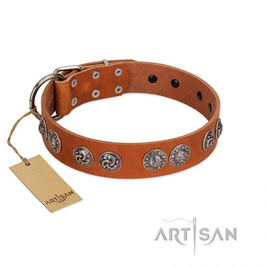 """Woofy Majesty"" FDT Artisan Tan Leather Boxer Collar with Round Silver-like Plates"