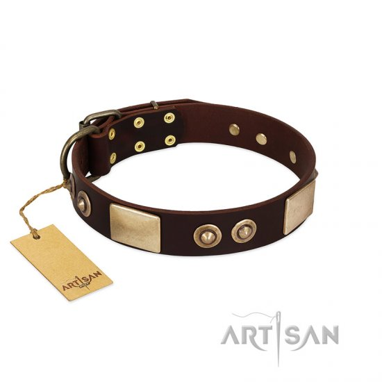 """Sense of Freedom"" FDT Artisan Brown Leather Boxer Collar with Old Bronze-Plated Studs and Plates"