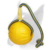 High Fly Training Foam Ball on Rope - Large 3 1/2 inch (9 cm)