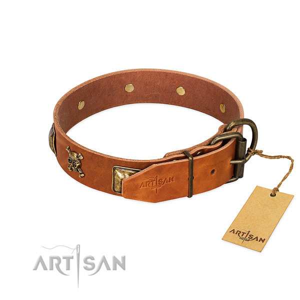 Stunning natural leather dog collar with corrosion resistant embellishments