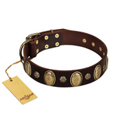 """Bronze Idol"" FDT Artisan Brown Leather Boxer Collar with Eye-catching Ovals and Small Studs"
