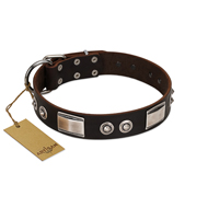 """Baller Status"" FDT Artisan Brown Leather Boxer Collar Adorned with a Set of Chrome Plated Studs and Plates"