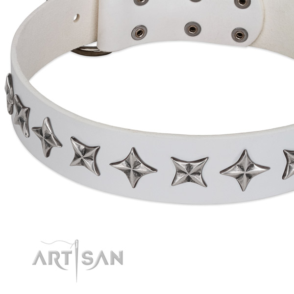 Daily use embellished dog collar of top notch full grain natural leather