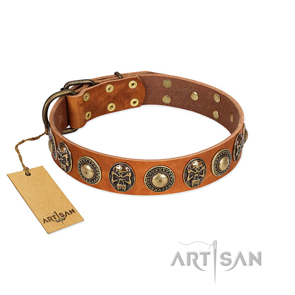 Easy to adjust full grain genuine leather dog collar for everyday walking your doggie