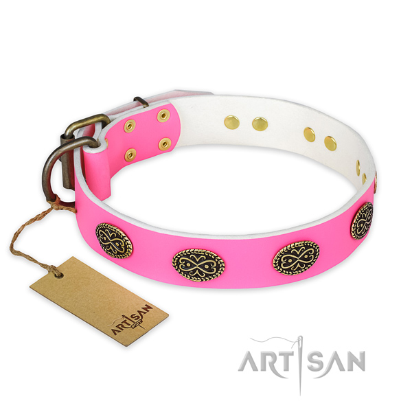Incredible genuine leather dog collar for everyday walking