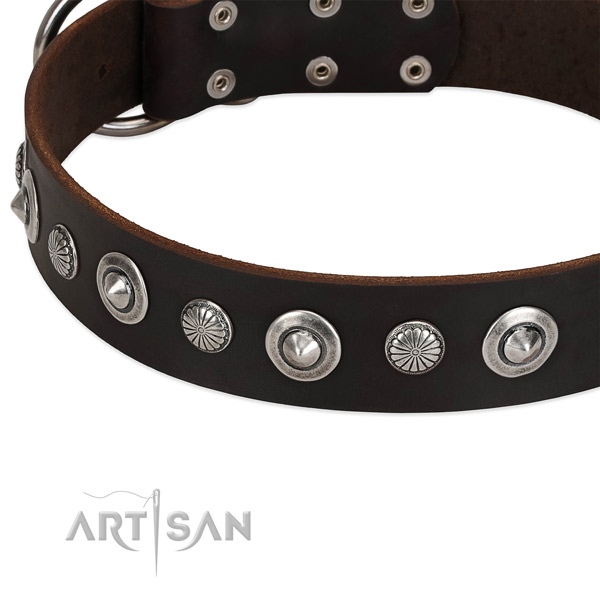 Inimitable studded dog collar of durable natural leather