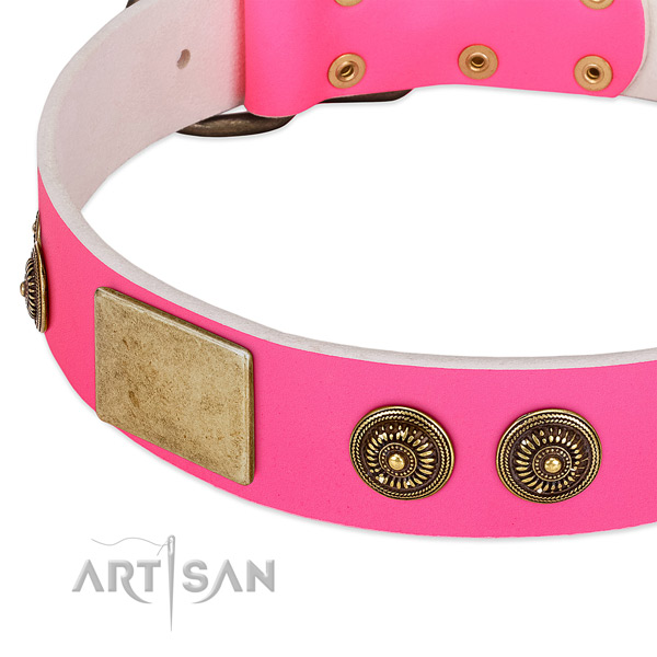 Handcrafted dog collar crafted for your lovely canine
