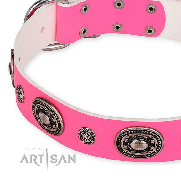 Genuine leather dog collar with stylish strong studs