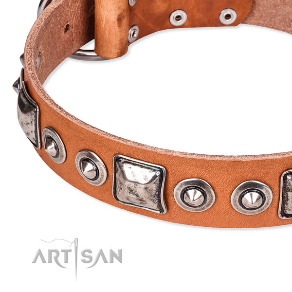 Strong natural genuine leather dog collar made for your stylish four-legged friend