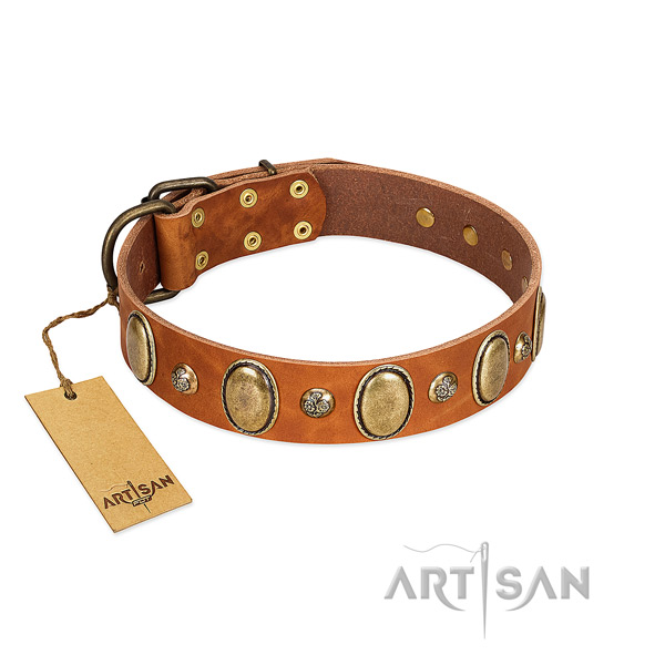 Full grain leather dog collar of soft to touch material with unique embellishments