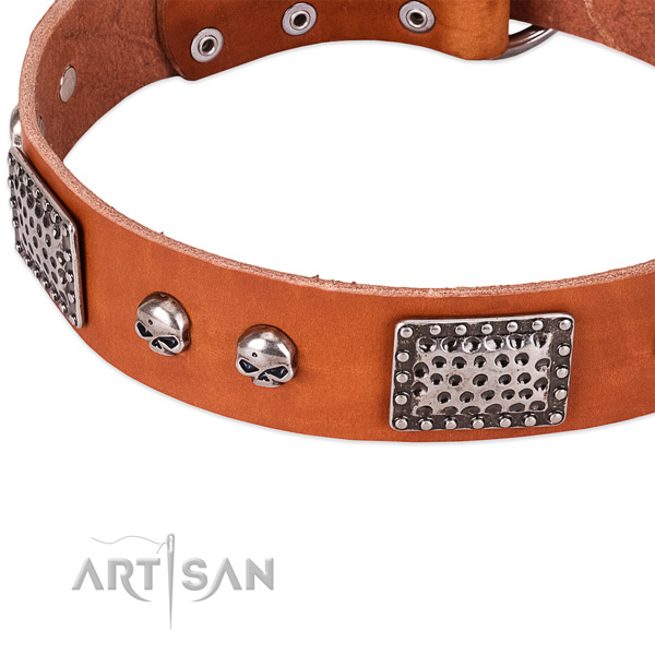 Strong studs on genuine leather dog collar for your doggie