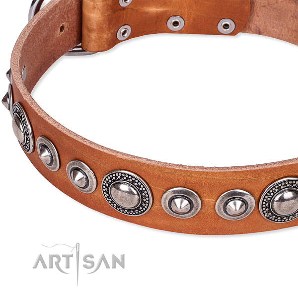 Comfortable wearing decorated dog collar of reliable full grain genuine leather