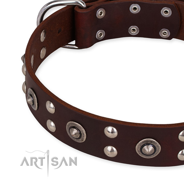 Full grain genuine leather collar with rust resistant D-ring for your handsome pet