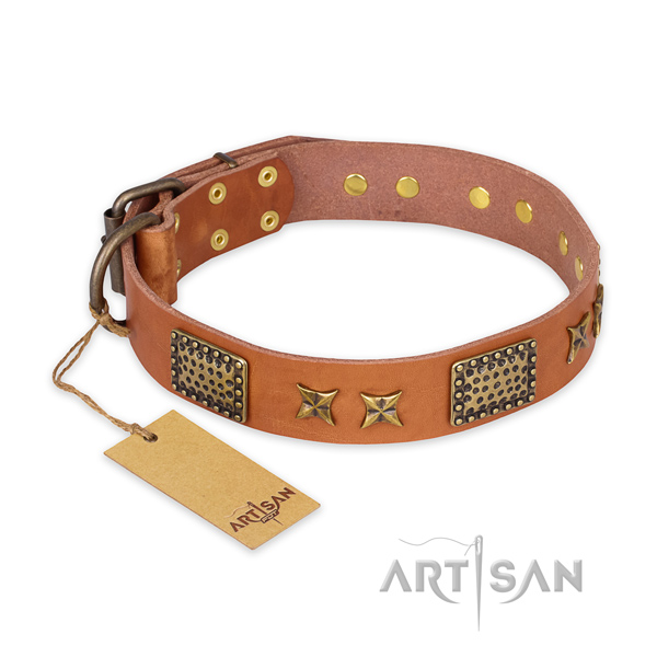 Fashionable genuine leather dog collar with reliable fittings