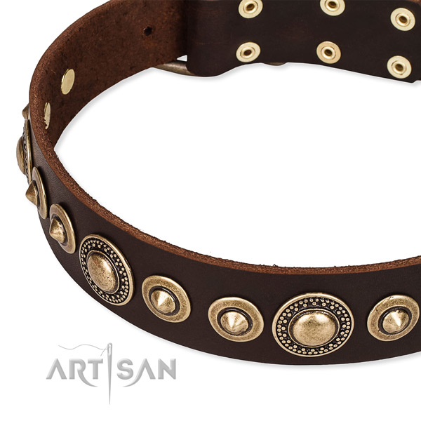 High quality leather dog collar handmade for your attractive canine