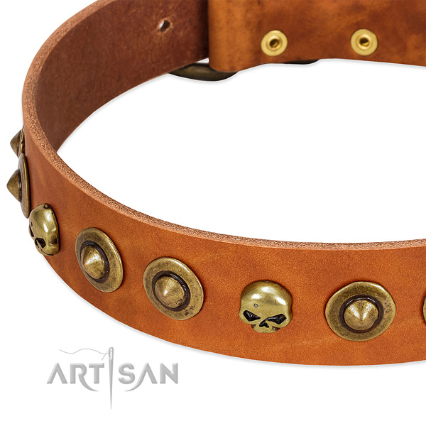 Exceptional embellishments on full grain genuine leather collar for your doggie