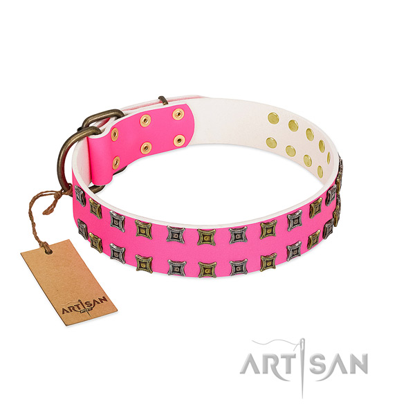 Genuine leather collar with exceptional decorations for your dog