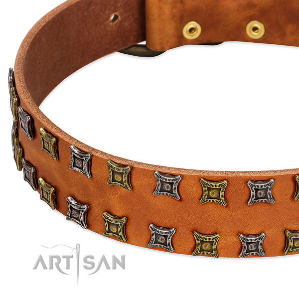 Quality genuine leather dog collar for your impressive doggie