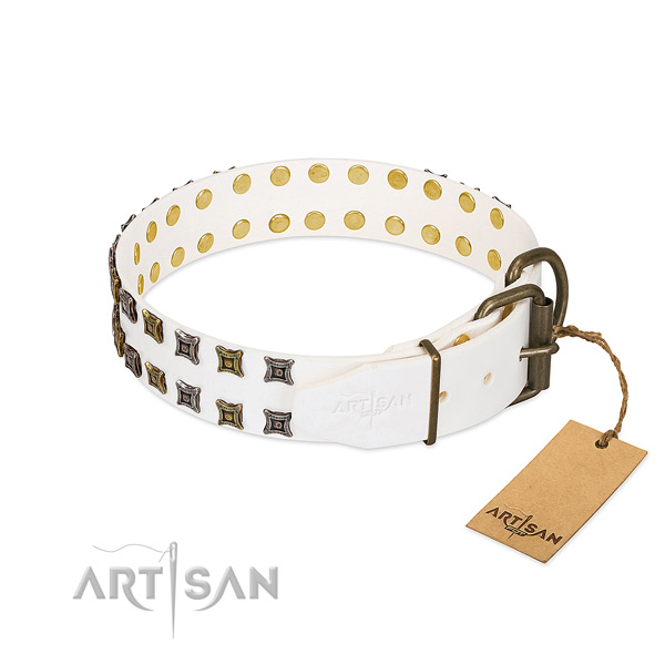Leather collar with stylish decorations for your pet