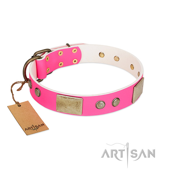 Easy to adjust natural leather dog collar for everyday walking your pet